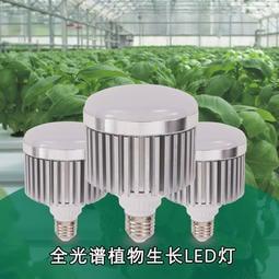 現貨 新一代 植物燈 仿太陽光 RA95高顯色 全光譜 戶外防水防塵 LED燈泡30W, 戶外農業 多肉 花卉 專用照明