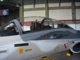 T-38 F-5E F-16 IDF 幻象2000   小敏模型代工