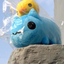 限量B[正版現貨 不用等]貓貓蟲-口水咖波 跟 小雞朋友 麻吉好朋友 生日禮物