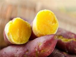 菜根園金時地瓜日本栗子地瓜 日本金時地瓜,台灣種植地瓜番薯