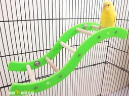☆瑞德寵物百貨☆ 波浪攀爬梯 | 增加籠內活動空間 | 可任意鎖於籠內任何處 | 小型鳥、中小型鳥、蜜袋鼯均適用