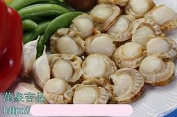 【萬象極品】小帆立貝(肉)/ 約300g~教您做芥菜鮮貝湯