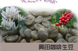 【興田咖啡生豆】巴拿馬 波奎特 翡翠莊園 鑽石山 日曬 *好豆新報到【每包500公克255元】