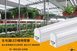 植物燈管 全光譜 T8層板燈4尺 光譜有效促進植物生長,可無光環境使用,有分生長型,育苗型