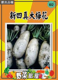 【野菜部屋~蔬菜種子】I02新四真大梅花蘿蔔種子4.5公克(約450粒) , 皮薄 ,每包12元~