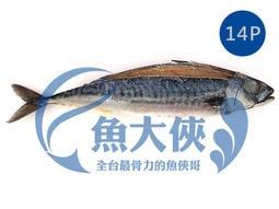 1D1A【魚大俠】FH149薄鹽漬挪威鯖魚(14尾/6KG/件)#MK14P