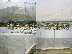 &~鋪天蓋地~& 白色16目 防蟲網 紗網  溫室用網 農業用 塑膠網