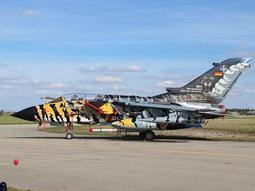 稀有虎紋塗裝 Revell 1/72 Tornado ECR Tigermeet 2011/12 #04847