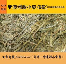 《富兔康》♥澳洲甜小麥(奶油香)100公克試吃包,共有兩款!★墾丁寵物牧草(富兔康)