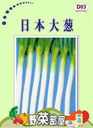 【野菜部屋~】D03 日本十國大蔥種子0.66公克(約300粒) , 蔥的極品 , 每包12元~