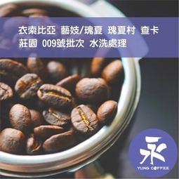 [永咖啡]-1磅749元,藝妓/瑰夏 瑰夏村 查卡莊園009號批次 水洗(衣索比亞)咖啡豆,滿500元免運,新鮮烘培
