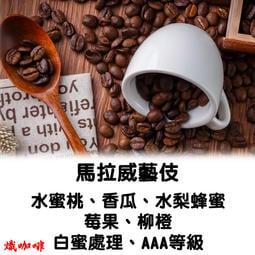 """消費滿$799免運 馬拉威/金猴 藝伎 藝妓 (半磅) 咖啡豆 批發價 手沖黑咖啡 咖啡 自家烘焙 """"熾咖啡"""""""